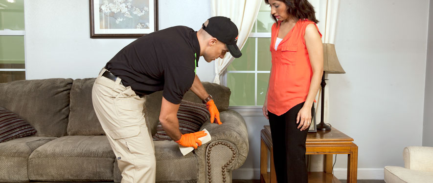 Forney, TX carpet upholstery cleaning