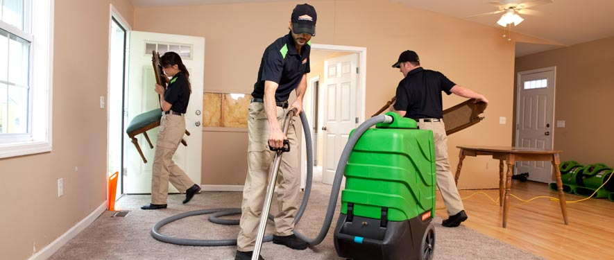 Forney, TX cleaning services