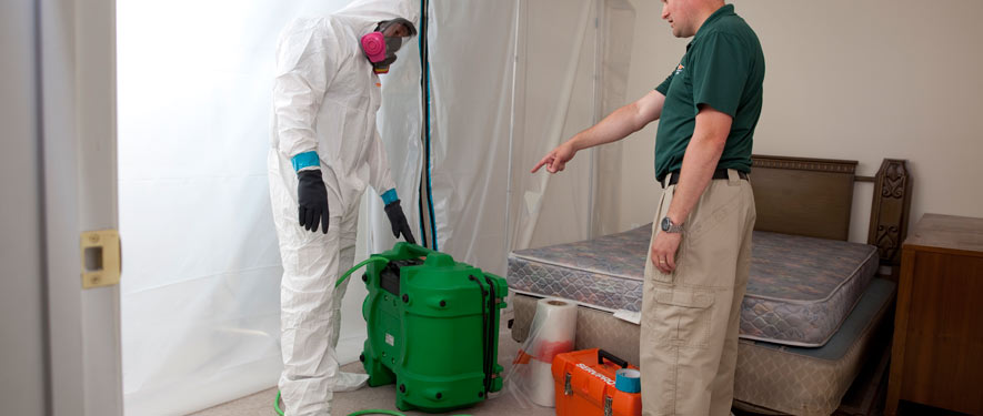 Forney, TX mold removal process